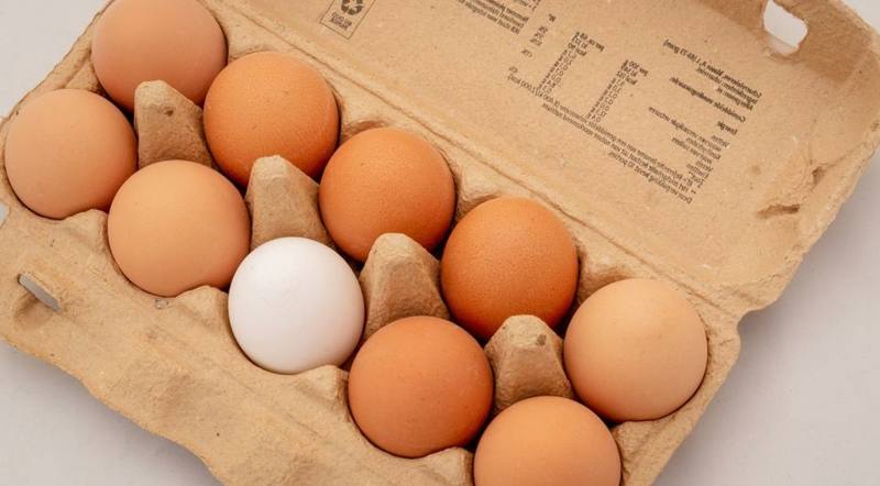 Rezepte mit Eiern