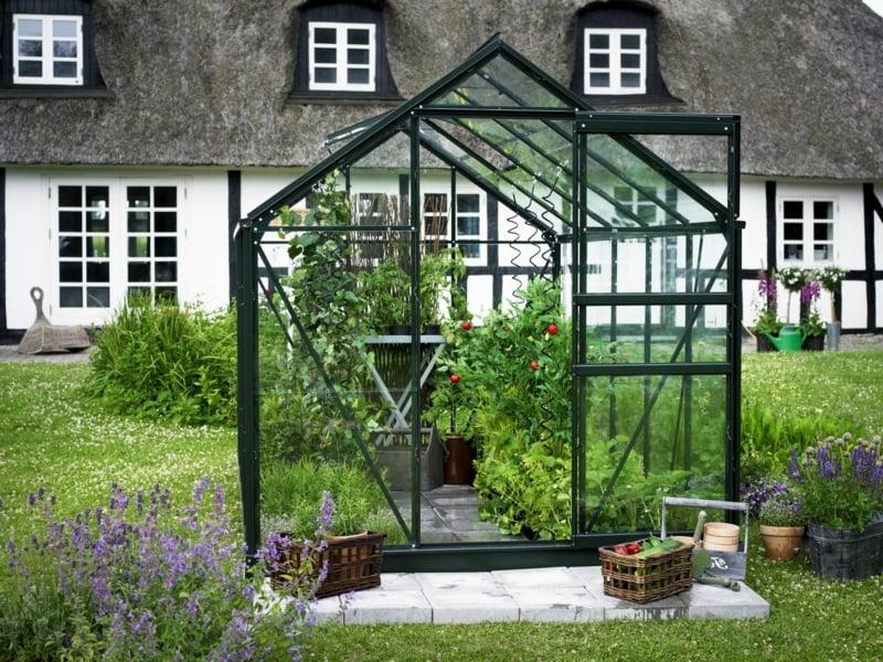Gemüse in Gewächshaus anbauen