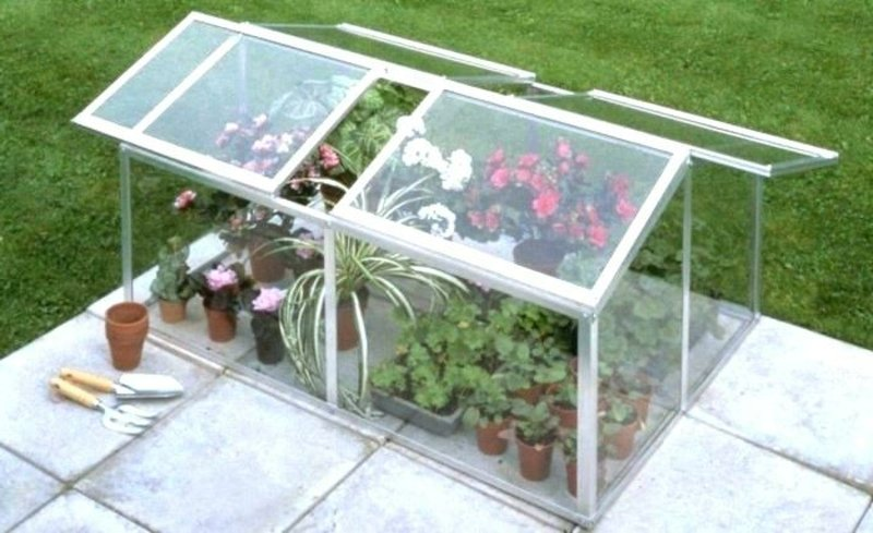 Gewächshaus klein für Blumen