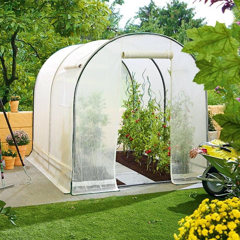 Gewächshaus Obst und Gemüse anbauen