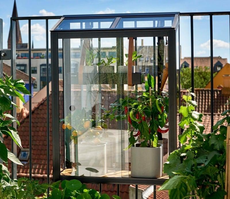 Mini-Gewächshaus auf den Balkon stellen