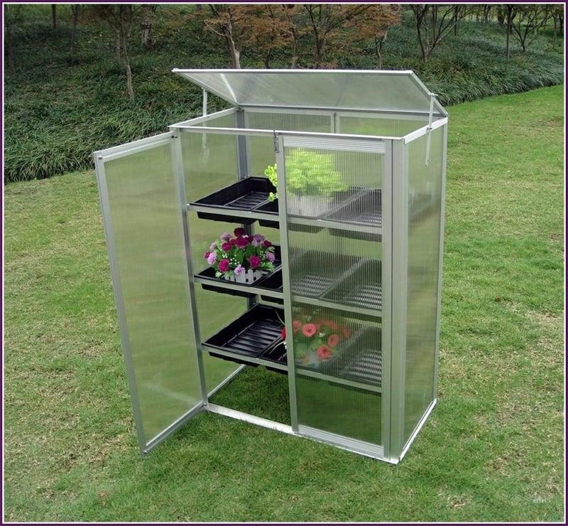 Mini-Gewächshaus aus Glas und Plastik
