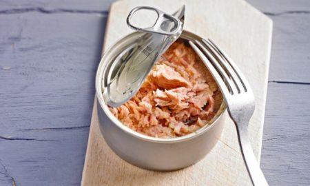 Thunfisch aus der Dose gesund lecker