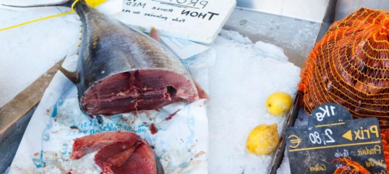 Thunfisch essen gesund