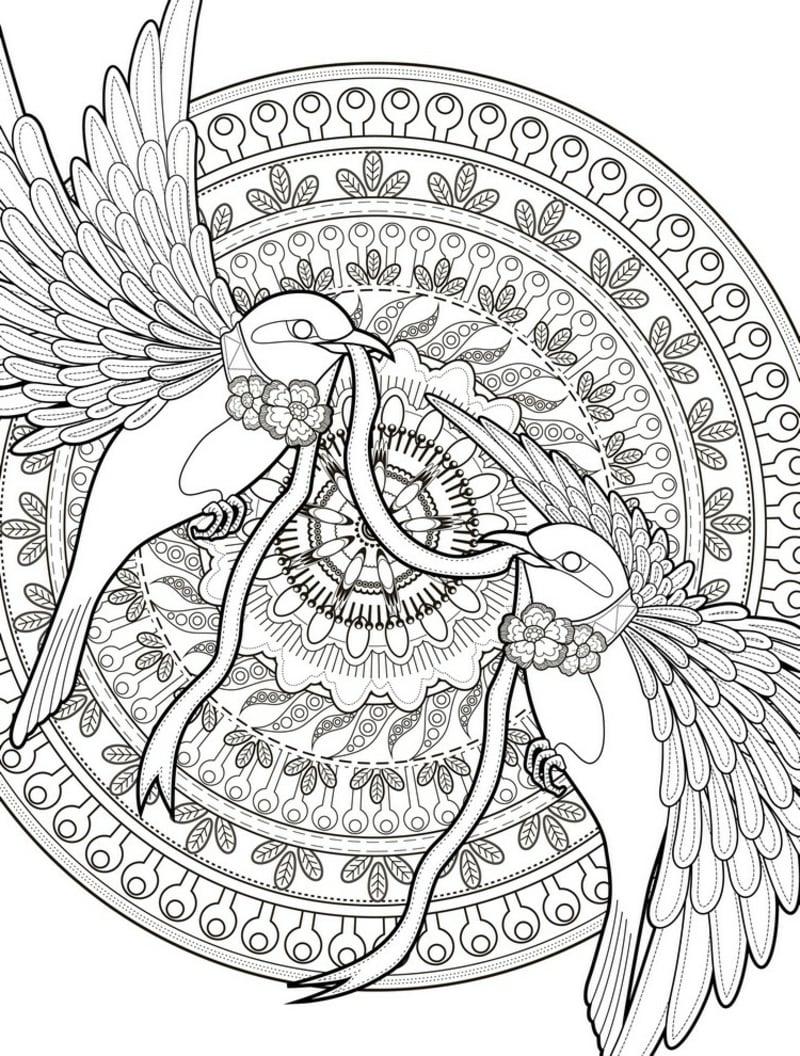 Mandala Vorlage zwei Vögel