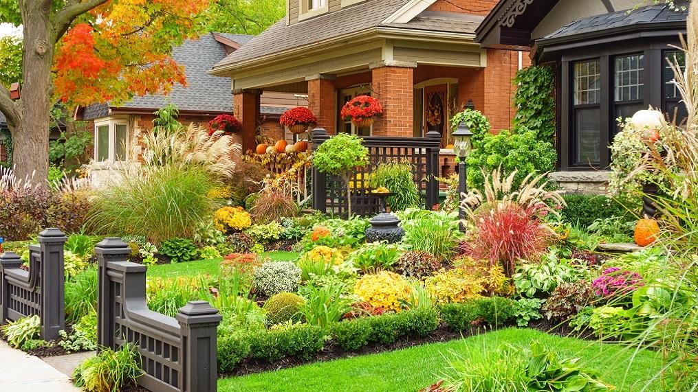 Der Garten zu gestalten und in ein echtes Paradies zu verwandeln: Hinweise