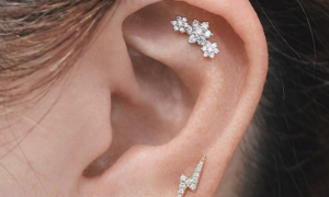 Ohrschmuck Piercings eleganter Look