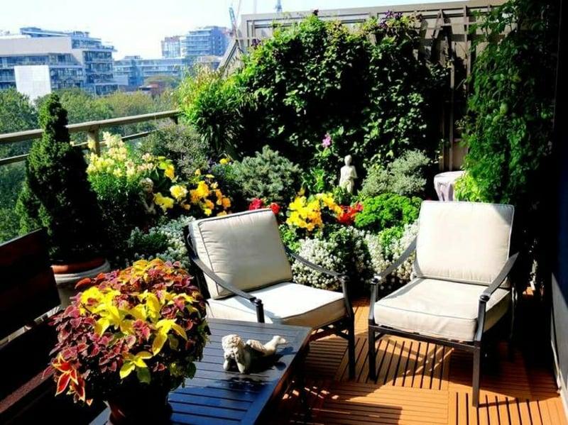 Balkon viele Pflanzen grüne Oase