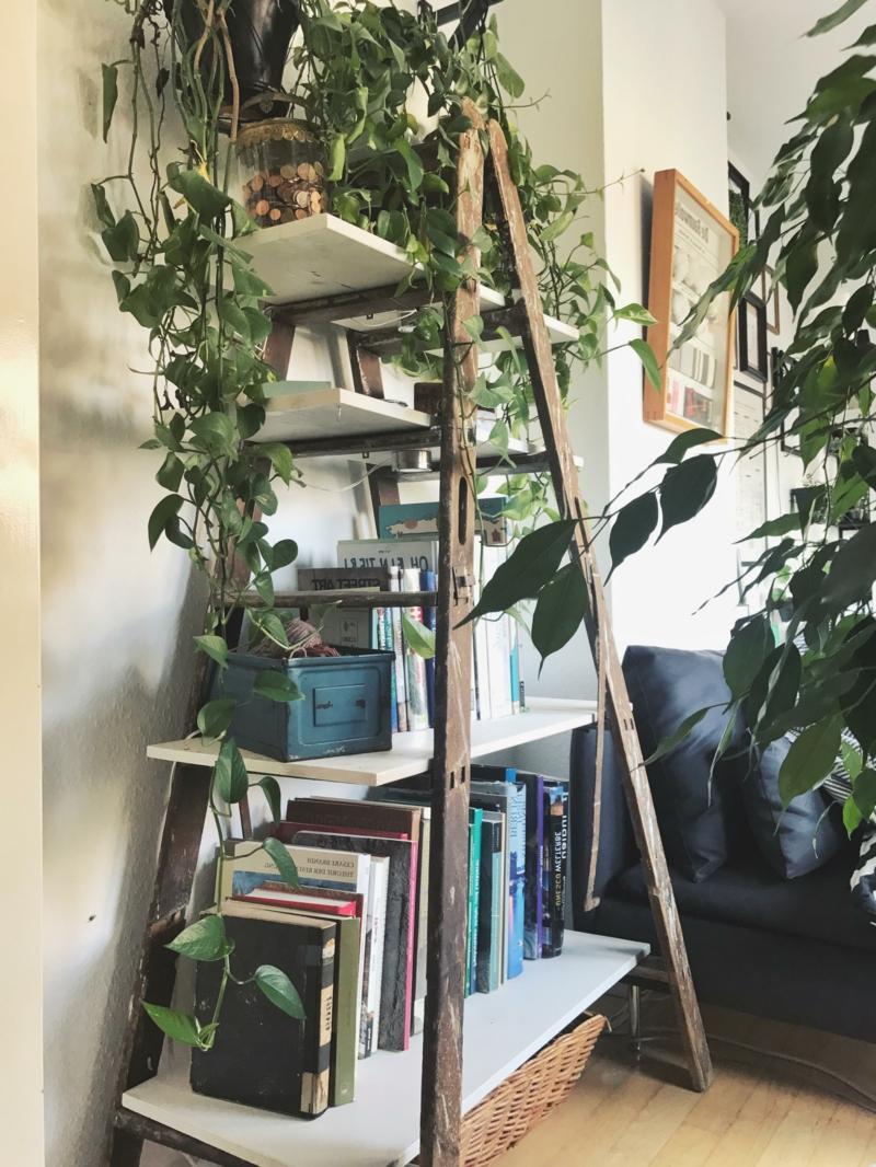 Bücherregal alte Holzleiter