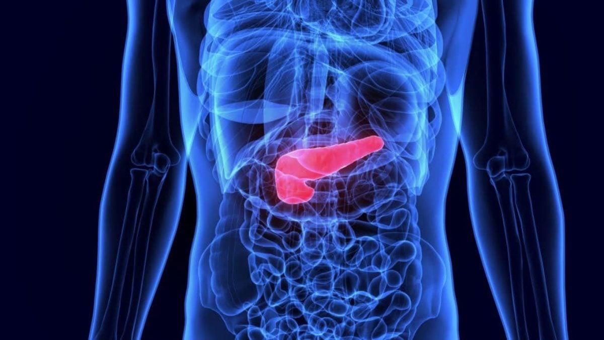 Gallenschmerzen: Information und hilfreiche Tipps