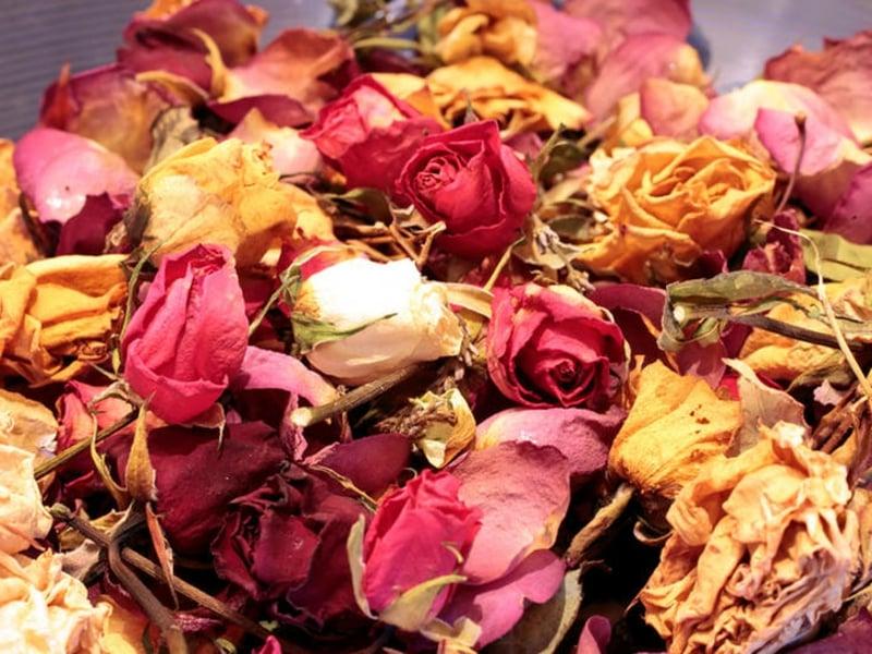 Potpourri selber machen mit ganzen Rosen