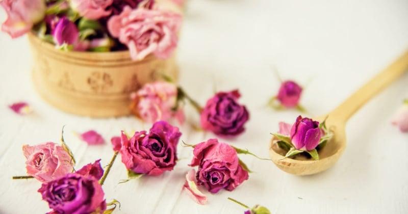 Duft Kerze trockene Rosenblüten