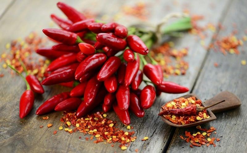 leckere Rezepte mit Chilischoten