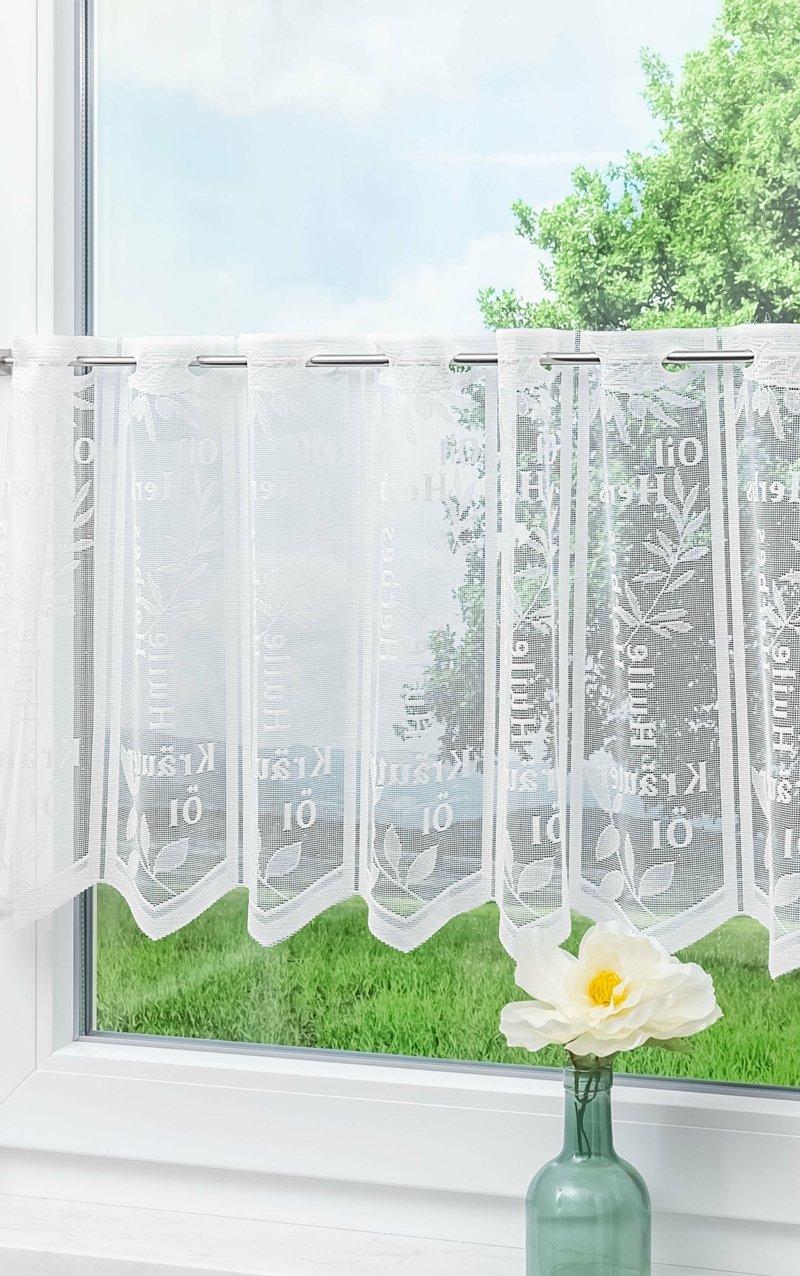 Scheibengardinen transparent