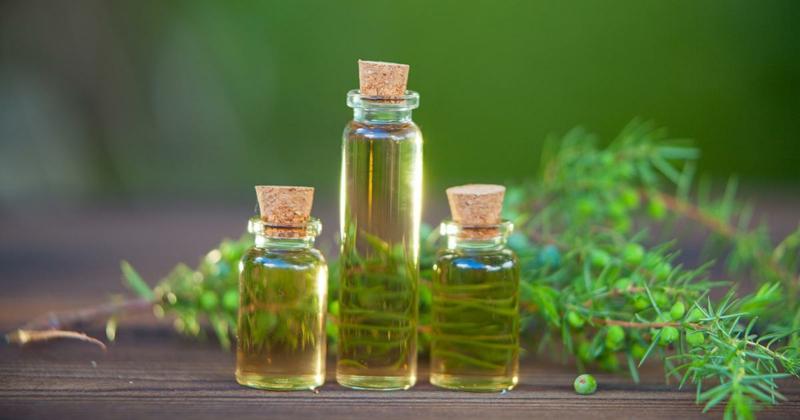 Naturkosmetik gegen unreine Haut Teebaumöl
