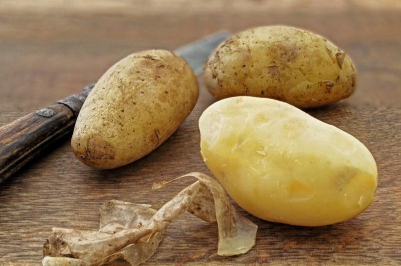 Kartoffelwasser als Dünger