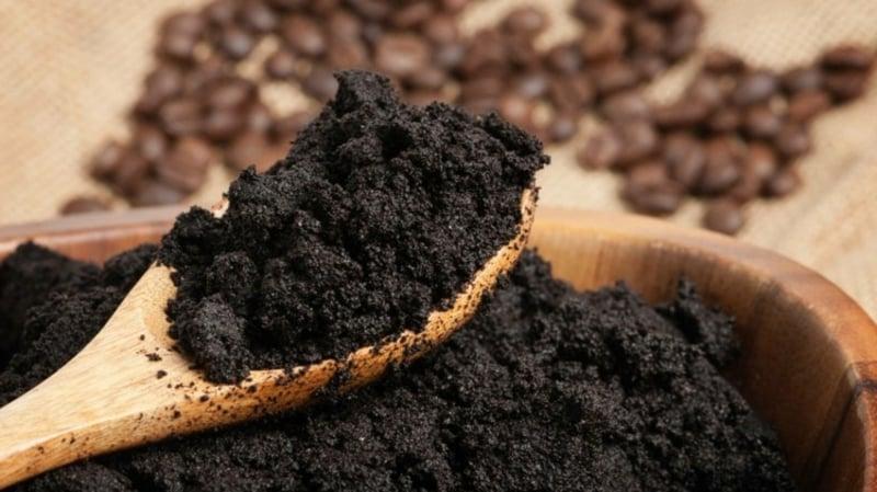 Kaffeesatz als Dünger verwenden