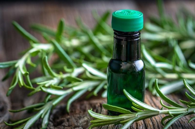 Rosmarinöl wohltuende Wirkung Körper und Geist