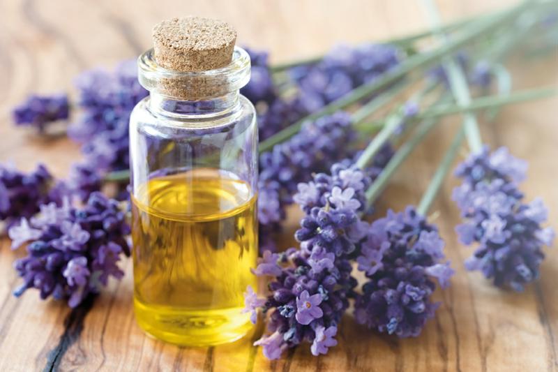 Raumduft als Einschlafhilfe Lavendelöl