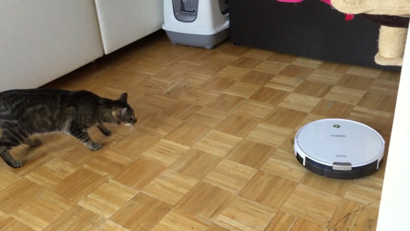 Staubsauger Roboter und Haustiere