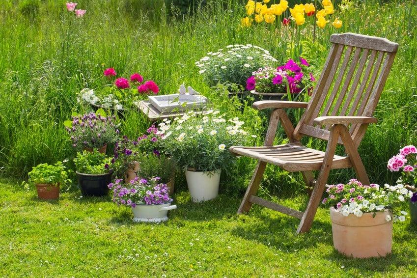 Gartensaison: Damit es im Sommer üppig grünt und blüht