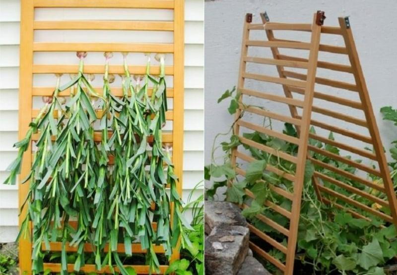 Spalier DIY für Gartenpflanzen