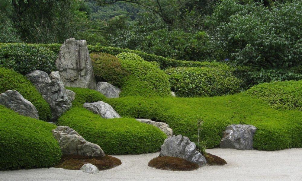 Zen-Garten: Ruhe finden in grüner Umgebung