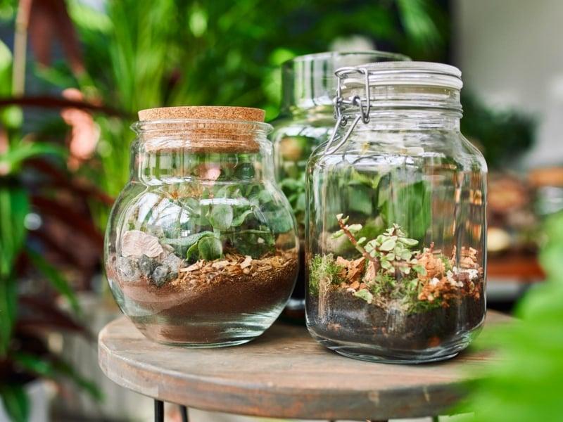 Flaschengarten verschließbare Gefäße