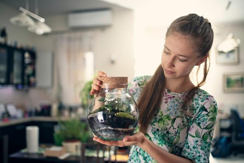 Pflanzen im Glas pflegen Experimente für Kinder