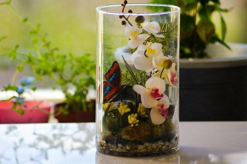 Flaschengarten blühende Pflanzen