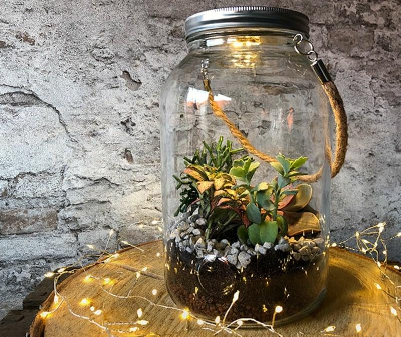Pflanzen Einmachglas groß verschließbar