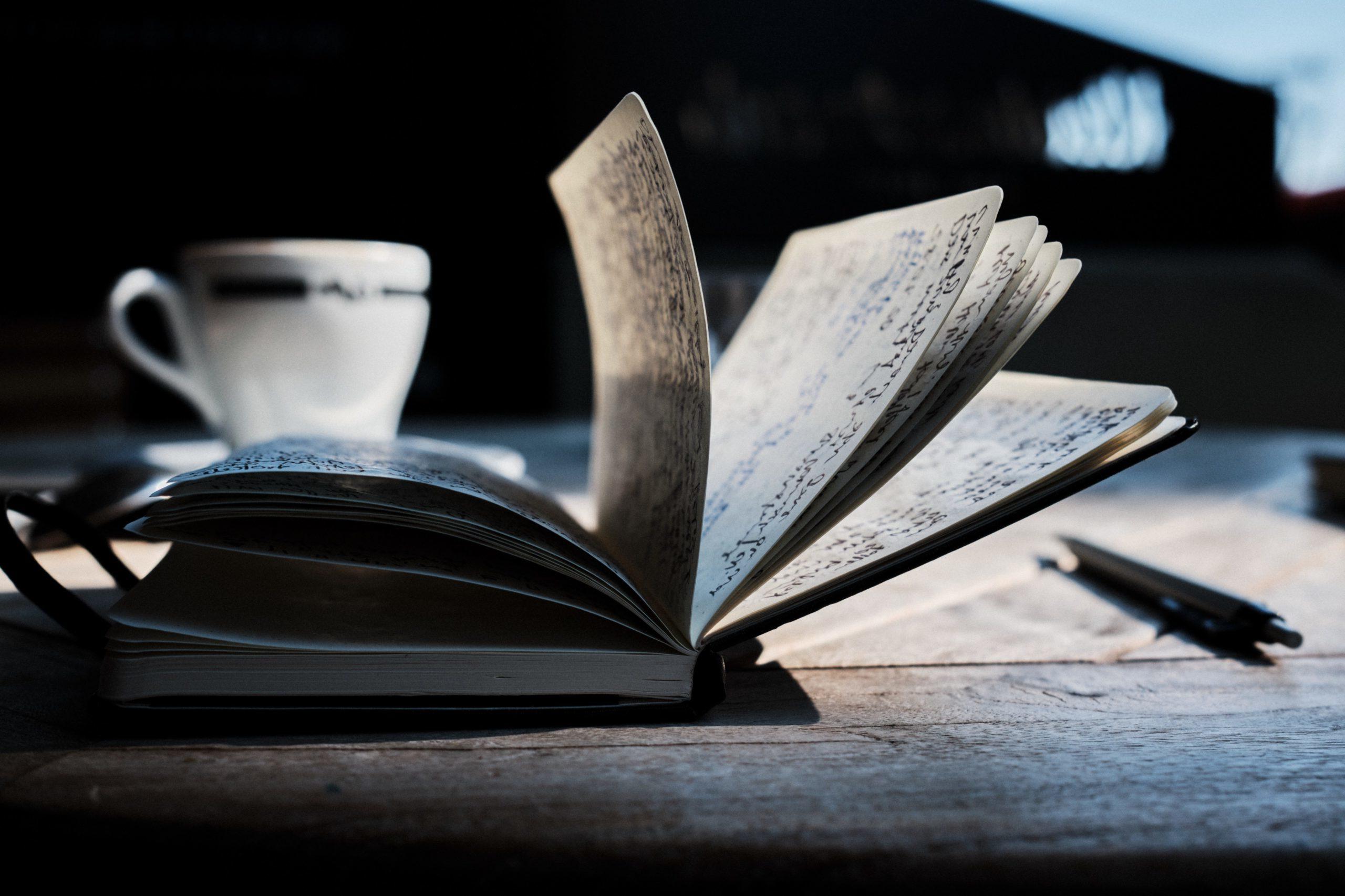 Traum vom eigenen Buch - vom ersten Absatz bis zum fertigen Buch