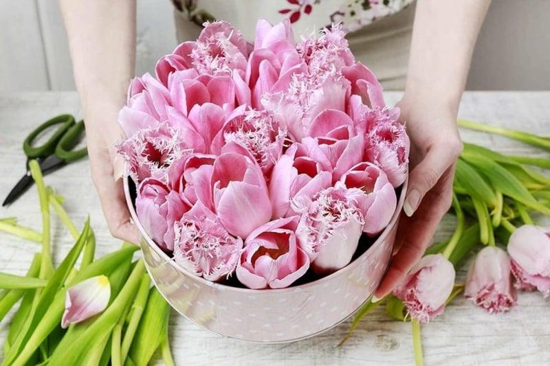 rosa Tulpen in Geschenkbox