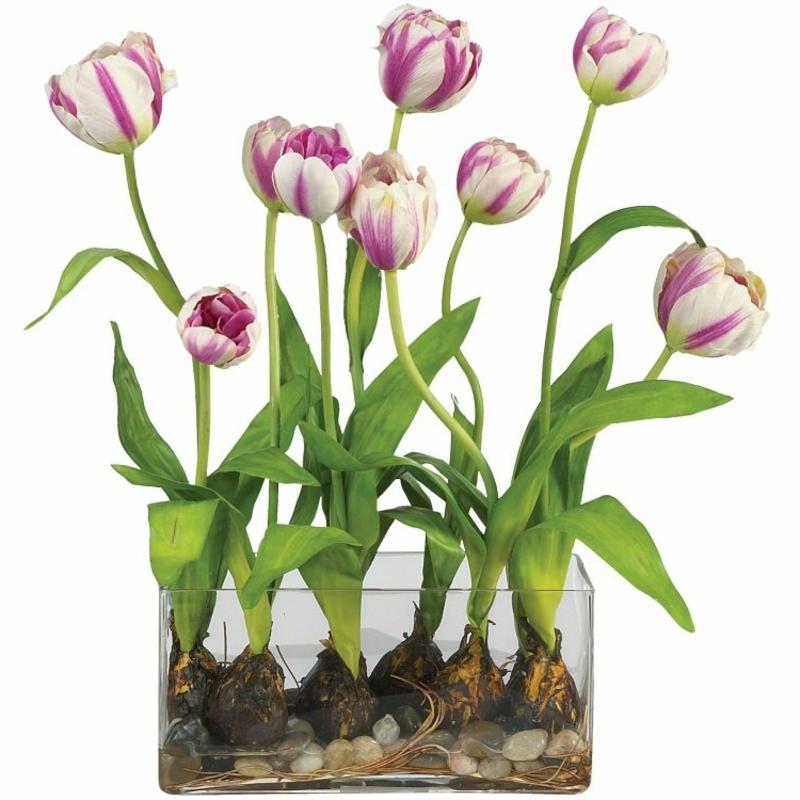 Tulpen arrangieren mit den Knollen