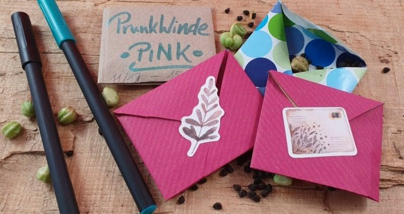 Päckchen basteln Samen rosa Papier