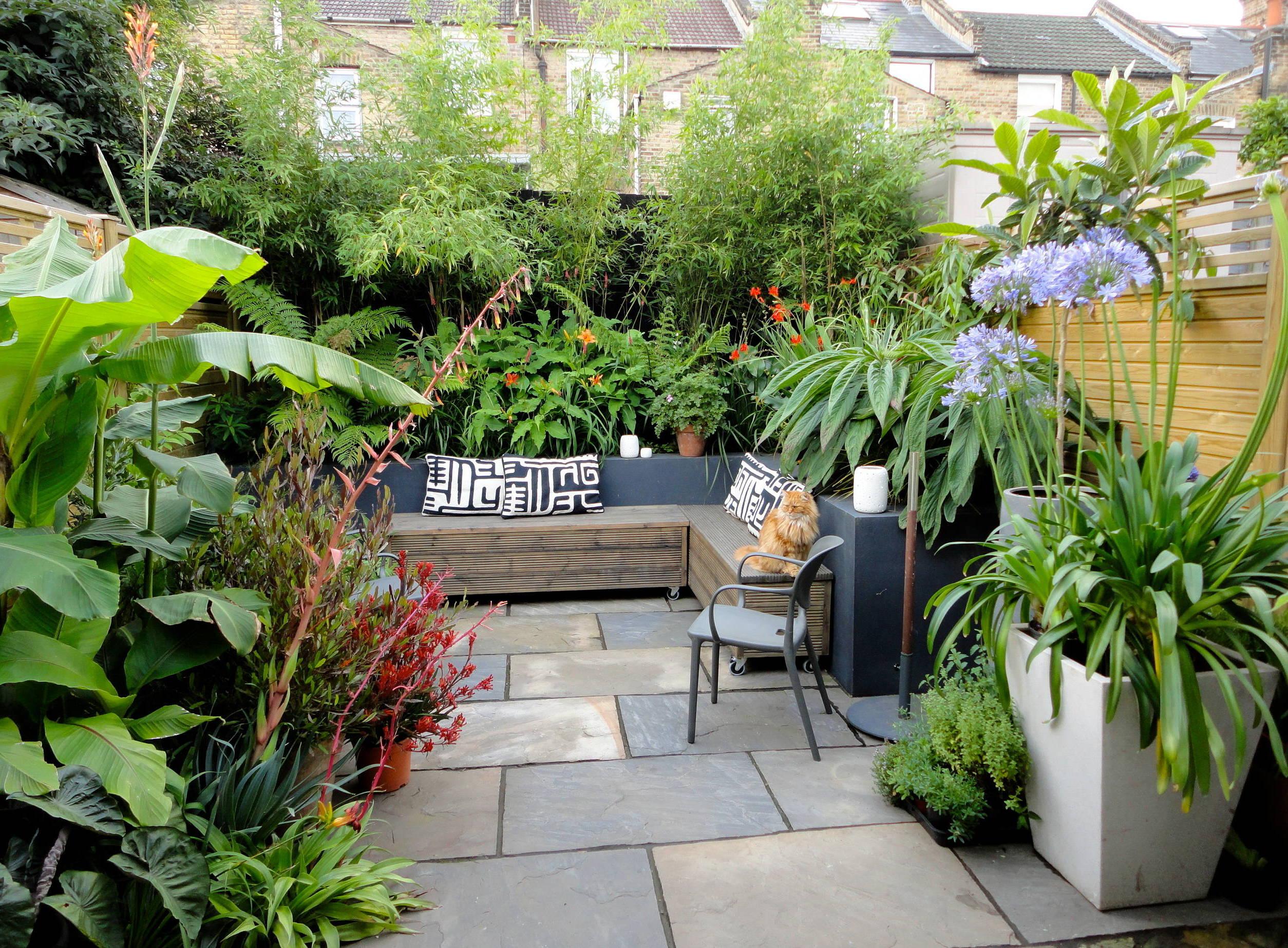 Mehr Pflanzen im Garten