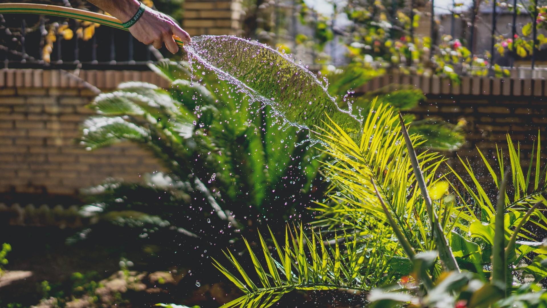 Entspannung beim Gärtnern finden: Auf die Erde, fertig, los