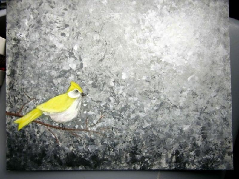 Bild Vogel gelb grauer Hintergrund