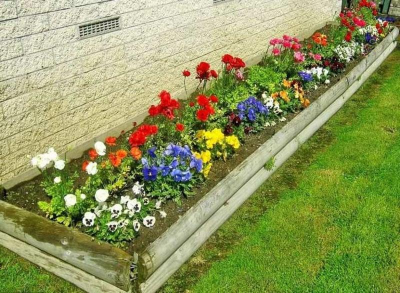 schmales Beet Blumen Holzeinfassung