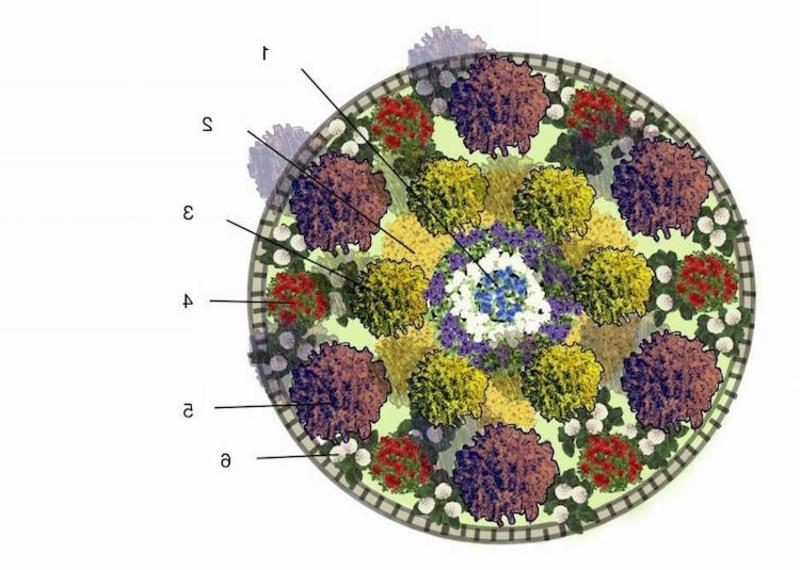 Blumenbeet anlegen in runder Form Schema