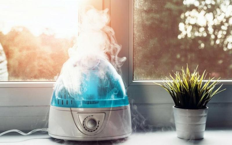 Luftbefeuchter und Gesundheit