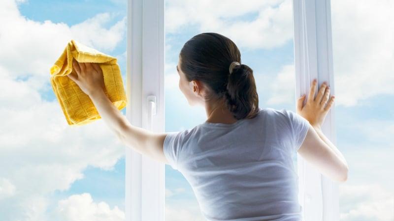 Fensterputzen