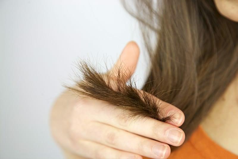Haarkur gegen Spliss mit Mayonnaise Haarspitzen reparieren
