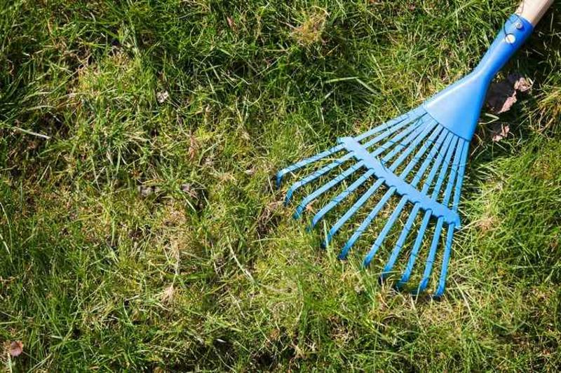 Laub rechen Gartenarbeit Tipps
