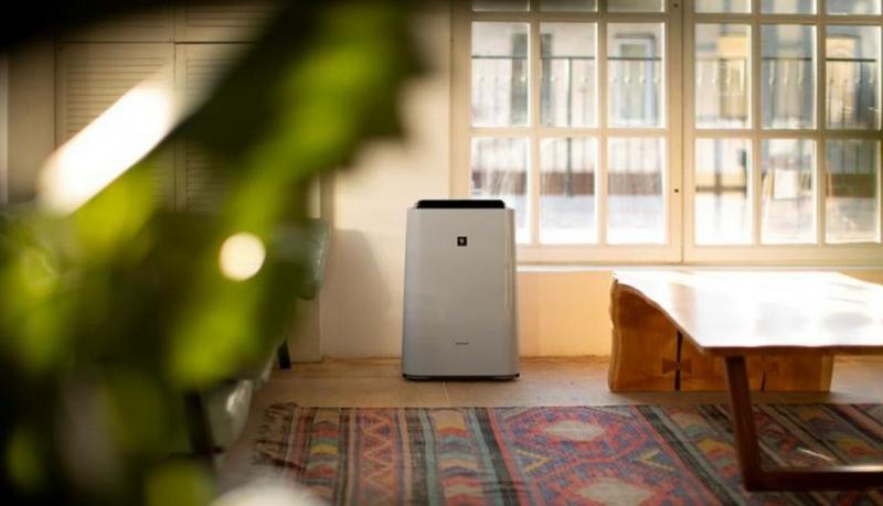 Luftbefeuchter für größere Räume auswählen