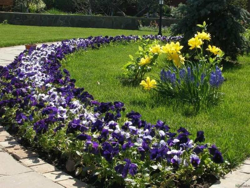 Randbeet gestalten blaue Blumen