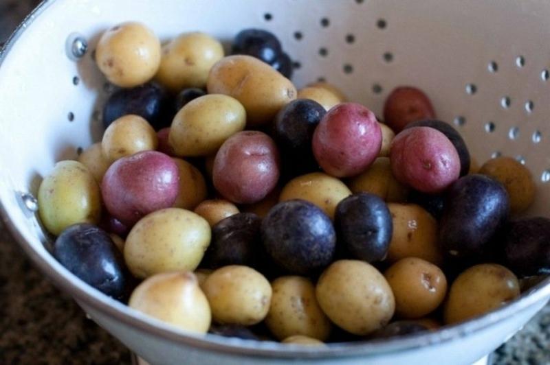 gekochte Kartoffeln für Kartoffelsalat