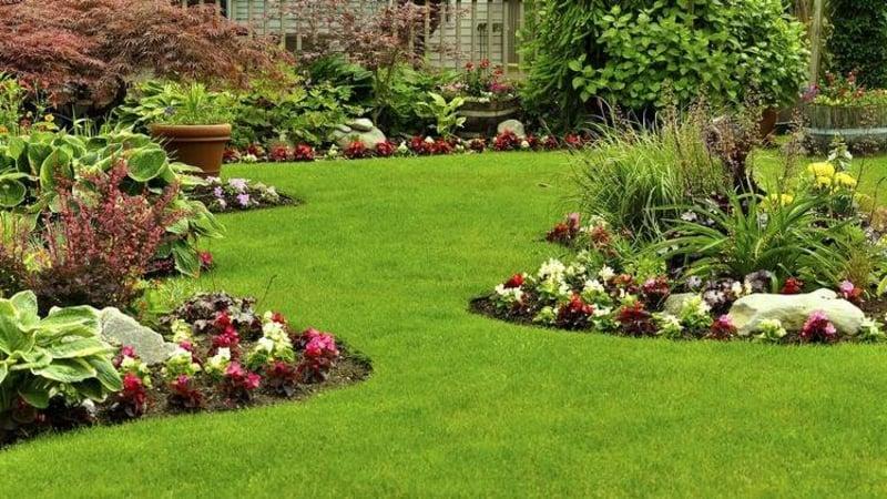 Blumenbeet anlegen der Garten Struktur geben