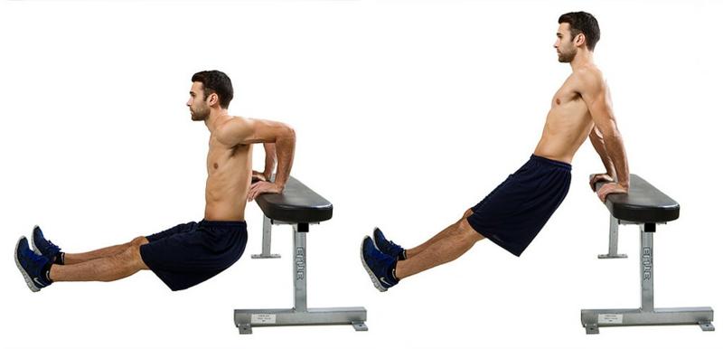 Trizeps trainieren Dips machen Sitzbank
