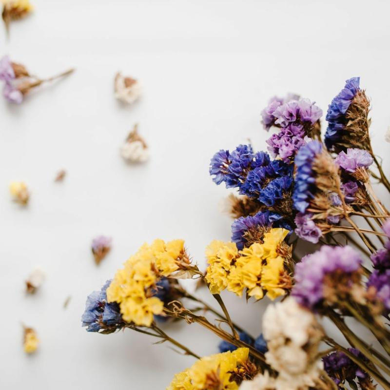Trockenblumen selber machen hilfreiche Tipps